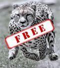120x135_SenEx_FREE