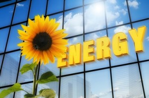"Lettering ""Energy"" and a sunflower"