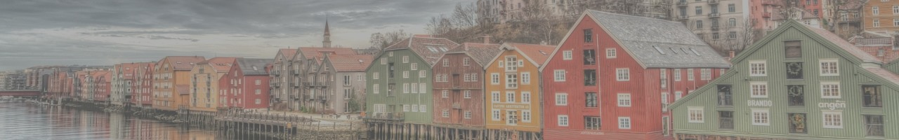 Trondheim, Norway: Course Location for Reservoir Engineering Course